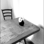 solitary_vase_bw_homepage_768x1024